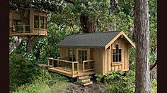 Pod House with a Tree House Option LOL
