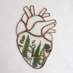 http://sosuperawesome.com/post/170632403172/pressed-ferns-and-flowers-stained-glass-anatomical