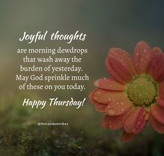 Joyful thoughts are morning dewdrops that wash away the burden of yesterday. May God sprinkle much of these on you today. Happy Thursday! #Thursdaymorningwishes #Thursdaypositivequotes #Happythursdayquotes #Thursdayquotesforwork #Goodmorningthursday #Morningthursdayquotes #Morningwishesquotes #Goodmorningwish #Beautifulmorningwish #Thursdayquotes #Thursdaymorningquotes #Thursdaysayings #Goodmorningquotes #Goodmorningsayings #Positiveenergy #Dailyquotes #Everydayquote #Instaquotes #therandomvibez Thursday Morning Quotes, Happy Thursday Quotes, Morning Wishes Quotes, Morning Pics, Morning Pictures, Good Morning Wishes, Good Morning Images, Good Morning Quotes, Work Motivational Quotes