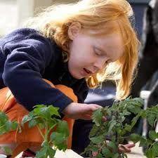 Kids gardening: where your kids will love!