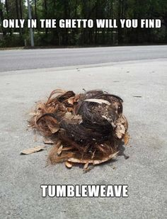 Meanwhile In Ghetto (40 Funny Pictures) - Page 5 of 8 - ViralNow