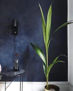 Kabe væg i Deep Blue Studio Interior, Interior Ideas, Nordic Interior, Copenhagen, Deep Blue, Glass Vase, Instagram Posts, Home Decor, Bedroom Ideas