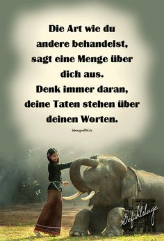 Sayings and quotes: beautiful of life sense of life You are in the right place about nail art coffin Here we … Sense Of Life, German Quotes, German Words, Animal Quotes, True Words, Proverbs, Life Lessons, Quote Of The Day, Life Quotes