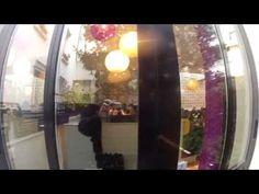 Les Petites Tables - La Belle Ronde Crêperie Paris Rue Daguerre Paris 75014