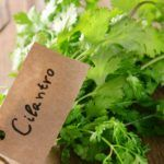 This Herb Will Treat Any Problems With Your Pancreas, Liver And Kidneys With A Single Blow