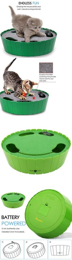 3 how mice enter your home through teeny little holes like this toys 20741 cat toy interactive cat teaser hide and seek electronic mouse hunt toy for spiritdancerdesigns Images