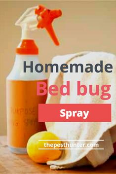 How to Make Homemade Bed Bug Spray For House Homemade Beds, Homemade Bug Spray, How To Make Homemade, How To Make Bed, Bug Spray For House, Bed Bug Spray, Bed Bugs Essential Oils, Essential Oil Bug Spray, Bed Bug Remedies