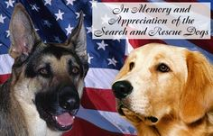 """""""In remembrance of the animal victims of the terrorist attacks of September 11, 2001. Among them are the K-9 bomb-detecting dog, Sirius, assigned to the World Trade Center, at least 3 search and rescue dogs who perished while performing their jobs, & the companion animals of the missing, dead, & displaced. Concern for the lives of animals in no way diminishes our feelings for the lives of the people affected by this tragedy, who remain in our thoughts and prayers."""" -Four Paws in Heaven.com"""