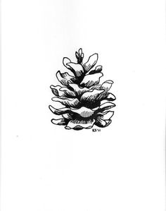 I like these pinecones.