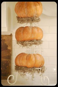 Pumpkins and moss on tiered stand.  Another great DIY idea for a Halloween Themed Wedding Decoration.  Keywords: #halloweenweddingdecorinspiration #diy #jevel #jevelweddingplanning Follow Us: www.jevelweddingplanning.com www.pinterest.com/jevelwedding/ www.facebook.com/jevelweddingplanning/