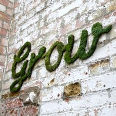 Grow your own Moss Graffiti! Paint this marvelous concoction on a wall and watch it grow.