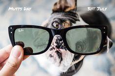 3ba1aaac0f Mutts Day // July 31 // #Caribbean RB4148 601/56. Sunglasses StoreSummer SunglassesRay  Ban ...