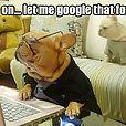Funny dog: Let Me Google that for you