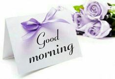 Beautiful good morning images with flowers Good Morning Rain, Good Morning Love Text, Good Morning Couple, Good Morning Massage, Good Morning Sunday Images, Good Morning Beautiful Images, Happy Morning, Good Morning Greetings, Morning Thoughts