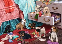 """Puppies and Kittens"" is a super cute two puzzle set from Falcon/Jumbo. Both puzzles are 500 pieces, and you can do them singly or mix all the pieces together to get a 1000 piece puzzle…"
