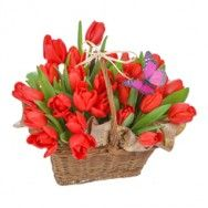 Lalele de 8 Martie - http://www.floricudrag.ro/53-flori-de-1-8-martie