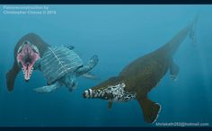 Un par deTylosaurus pembinensis dando caza a una tortuga prehistórica, Protostega gigas en los antiguo mar interior de que dividía Norteamérica hace 70 millones de años.&n...
