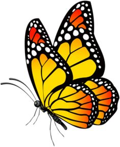 d r a w i n g Drawing butterfly Drawing Butterfly Clip Art, Butterfly Drawing, Butterfly Pictures, Butterfly Painting, How To Draw Butterfly, Drawings Of Butterflies, Yellow Butterfly Tattoo, Butterfly Stencil, Simple Butterfly