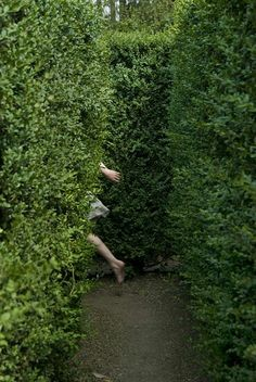 Kids giggling in the backyard playing hide and seek