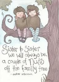 cute quotes for sisters - Google Search