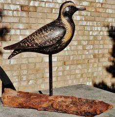 One-Of-A-Kind! MINT Steve Morey GOLDEN PLOVER SHOREBIRD Wood Duck Decoy CARVED M