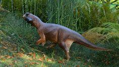 Dinosaur's camouflage pattern revealed - BBC News