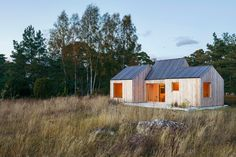 Gallery of Field House / Lookofsky Architecture - 24 Architecture Photo, Residential Architecture, House Architecture, Skylight Design, Swedish House, Design Fields, Reading Room, Large Windows, Cladding