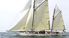 Javelin - 84ft/24.00m Gaff Ketch 1897 by Paine & Sons