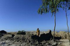 Climat : voyage sur l'île de la bataille perdue - Making-of AFP