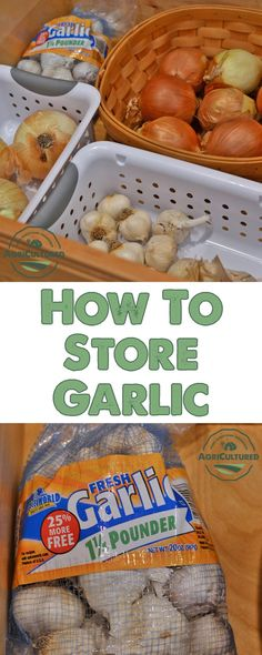 How to Store Garlic on AgriCultured. You can buy garlic in bulk so you never run out! As long as you store it properly, garlic can be kept for months, or even longer in your freezer. Basic Kitchen, Kitchen Tips, Kitchen Gadgets, Garlic Storage, How To Store Garlic, Best Vegetable Recipes, Garlic Recipes, Grow Your Own Food, Fruits And Veggies