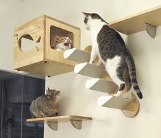 Awesome Diy Cat Playground Design Ideas To Try For Your Interior 06 Cat Climbing Wall, Cat Wall Shelves, Cat House Diy, Diy Cat Tree, Cat Playground, Playground Design, Cat Towers, Animal Room, Pet Furniture