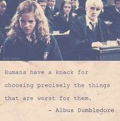 Dumbledore shipped them!