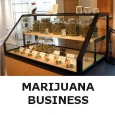 cannabis-business-online-courses-300x300 - Cannabis Education Centre - Green Cultured