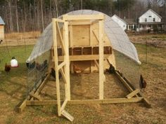 A nice short article about getting started with chickenkeeping.
