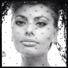 Sophia Loren by Stern
