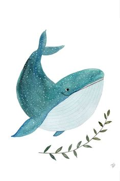Art And Illustration, Watercolor Illustration, Watercolor Paintings, Illustrations, Watercolour, Animal Drawings, Cute Drawings, Whale Art, Wale