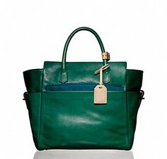 this bag.