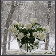 White roses in winter Happy Birthday Good Wishes, Happy Name Day, Happy Brithday, Photo Effects, Ikebana, Beautiful Roses, White Roses, Flower Vases, Floral Arrangements