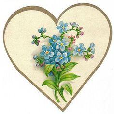 Images d'autrefois: Image ancienne fleurs