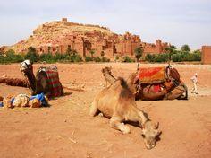 Morocco desert tours #morocco #travel http://livedan330.com/2014/11/26/morocco-desert-tours/