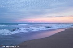Sandpipers and waves (7873) #beach #sunset #waves #ilopix