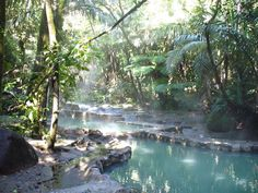 100% Natural Hot Springs waiting for you!