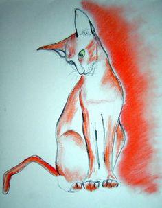 Piros macska by rozsabors, via Flickr