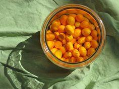 vodka soaked kumquats