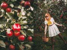A Clothes Horse: Outfit: Apple Picking Season Apple Picking Season, Brown Tights, Apple Harvest, Mori Girl, Clothes Horse, Personal Style, Fall Winter, Vintage Fashion, Seasons