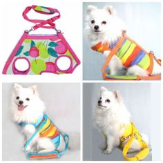 Multifunction Pet Carrier Puppy Harnees Cltoh Dog Lesh Pet Portable Bag 4 in 1   eBay