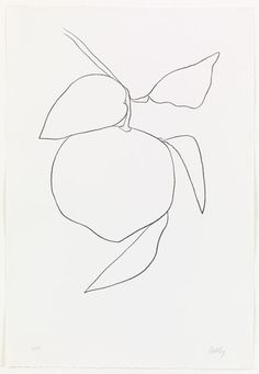 Ellsworth Kelly. Grapefruit (Pamplemousse) from Suite of Plant Lithographs. 1964-65, published 1966