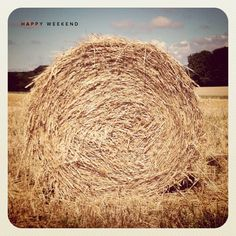 """""""hay bales in France are round."""" - They are in  most countries where they are feeding large volumes of animals. Its only the smaller farms that use small rectangular bales."""