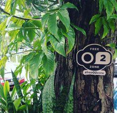 """Os pontos gratuitos de wi-fi têm sido cada vez mais requisitados pelo público. Para lembrar as pessoas de que existem itens tão essenciais e muito mais escassos, um grupo de publicitários criou o projeto #freeO2zone, que consiste em uma intervenção urbana com placas nas árvores para indicar os """"pontos de ar livre""""."""
