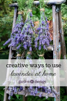Creative recipes for using lavender like dryer bags, body butter, bath salts, linen spray and even lavender lemonade!